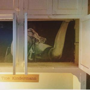 Installation by Tine Kindermann: Erotic Artwork hidden in a kitchen cabinet. GIAF15